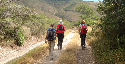 Walking in the northern andes